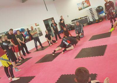 Grappling Seminar am 11 Maerz 2018 in der Kampfsportakademie Holtz (11)
