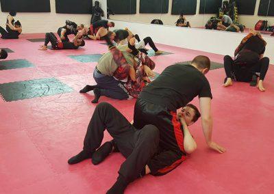 Grappling Seminar am 11 Maerz 2018 in der Kampfsportakademie Holtz (17)