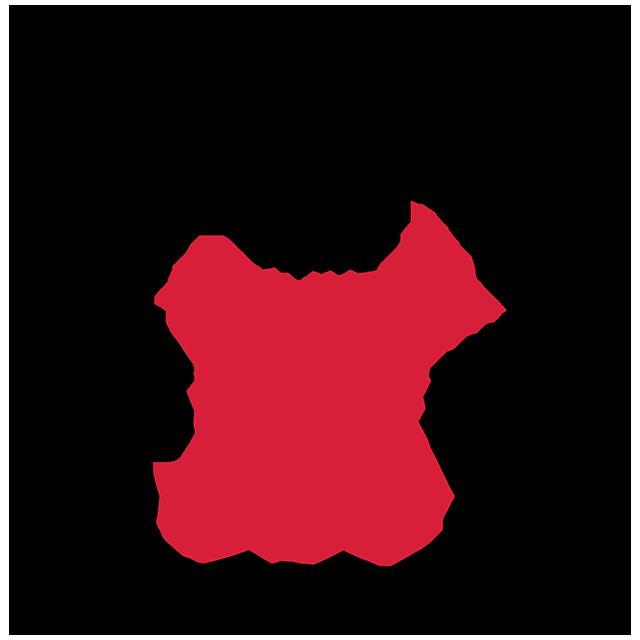 Kampfsportakademie Holtz